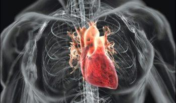 Bolile cardiovasculare – de la recomandarile ghidurilor la realitatea clinica
