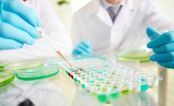 Procedee citochimice destinate evidentierii proteinelor ribonucleice nucleolare si cromozomiale