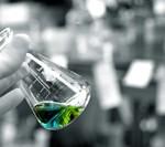sistemul unic de diagnostic molecular si identificare a terapiilor tintite pentru cancer – acum si in Romania