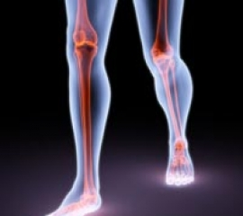 CELLULAR AND MOLECULAR MECHANISMS OF BONE HEALING