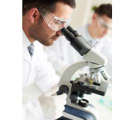 Studierea celulelor stem