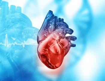 Endocardita infectioasa – manifestari clinice si tratament