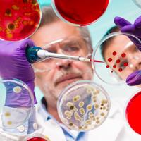 Competitia Pfizer pentru cercetatorii in domeniul bolilor cardiovasculare