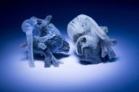 res-model cardiac 3D obtinut prin imprimare