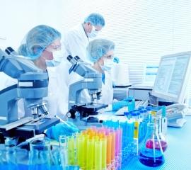 celule-stem