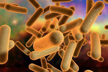 Tratament nou pentru prevenirea recurenței infecției cu Clostridium difficile
