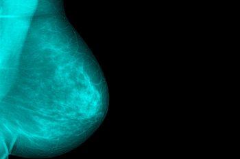 Anatomia și fiziologia lactației