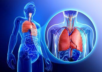 Primul transplant pulmonar din România, un succes