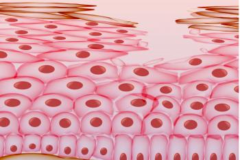 Celulele pielii pot fi reprogramate în celule dendritice