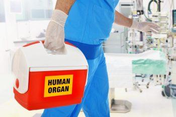 Colaborare între România și Republica Moldova în domeniul transplantului de organe