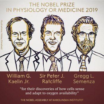 Premiul Nobel pentru Medicină a fost câştigat de trei oameni de ştiinţă