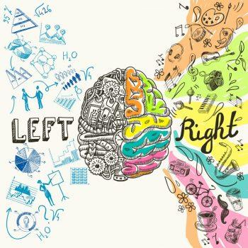Ce emisferă a creierului este responsabilă de creativitate?
