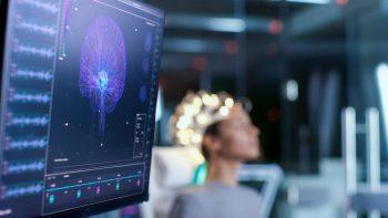 Stresul, generat de rețelele neuronale aparținând hipocampusului