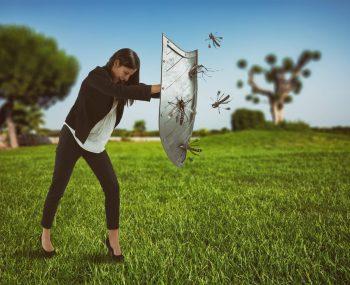 Primul ajutor în cazul înțepăturilor de insecte