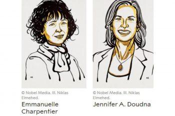 """Premiul Nobel pentru Chimie, acordat pentru """"rescrierea codului vieții"""""""