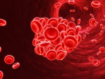 Trombofilia, cauza apariţiei cheagurilor de sânge