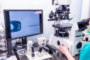Fertilizarea in vitro – tehnici, recomandări, contraindicații